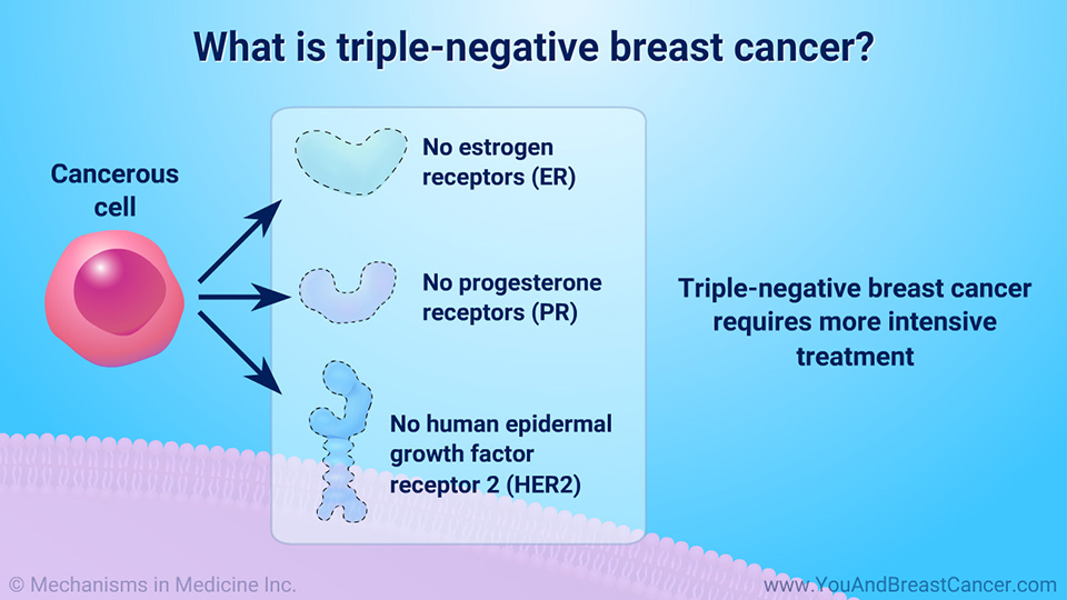 What is triple-negative breast cancer?